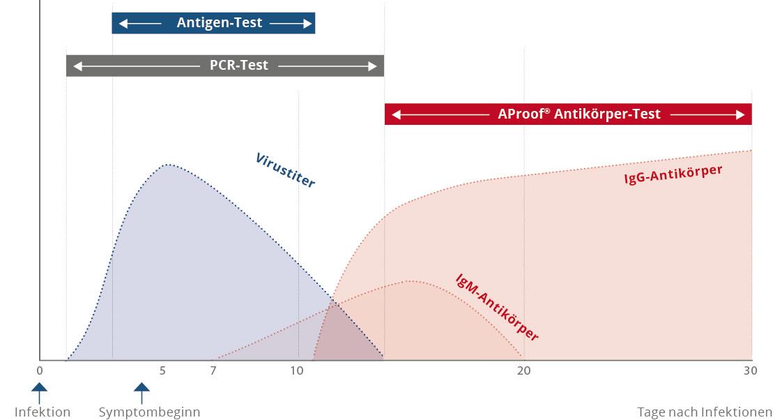 Zeitpunkt zum Nachweis einer Corona Infektion bei den Testmethoden Antigen-Test, PCR-Test und Corona Antikörpertest